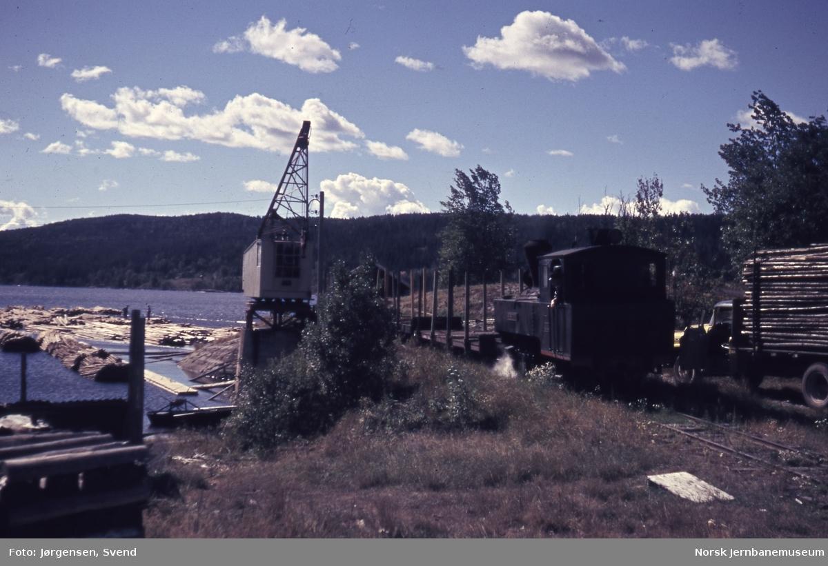 """Damplokomotiv nr. 4 """"Setskogen"""" ved tømmerkrana på Skulerud stasjon"""