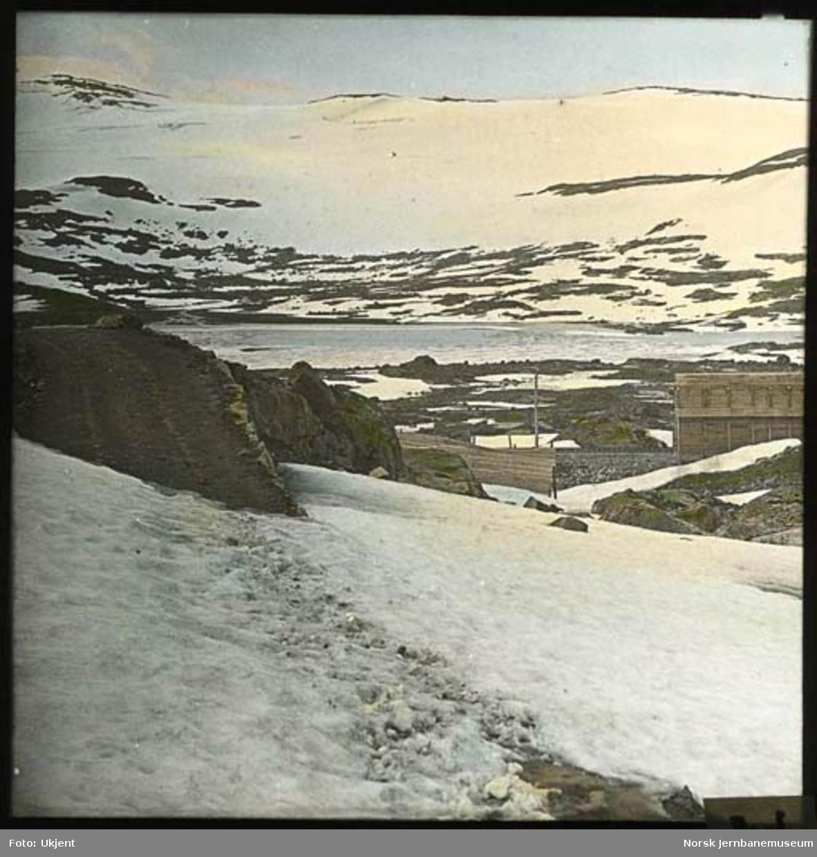 Parti fra Bergensbanen med vestre ende av Finsevatn og Bukkeskinnsbotn i bakgrunnen