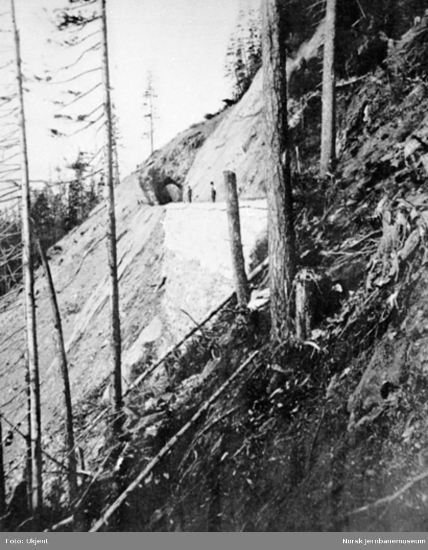 Parti fra linjen i Drøiliene - med en av tunnelene