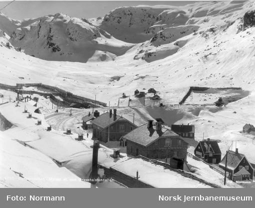 Oversiktsbilde over Myrdal stasjon sett fra sørøst