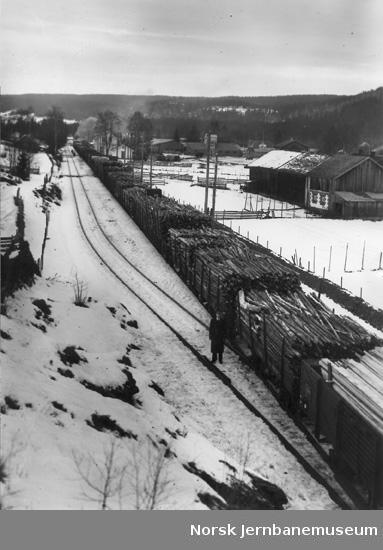Åbogen stasjon med et langt godstog