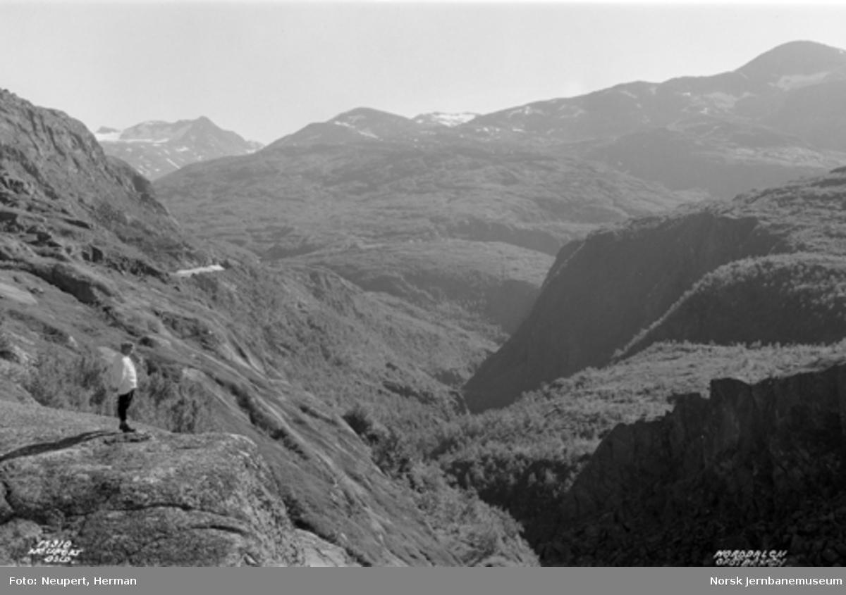 Utsikt over Norddalen fra Norddalsenden
