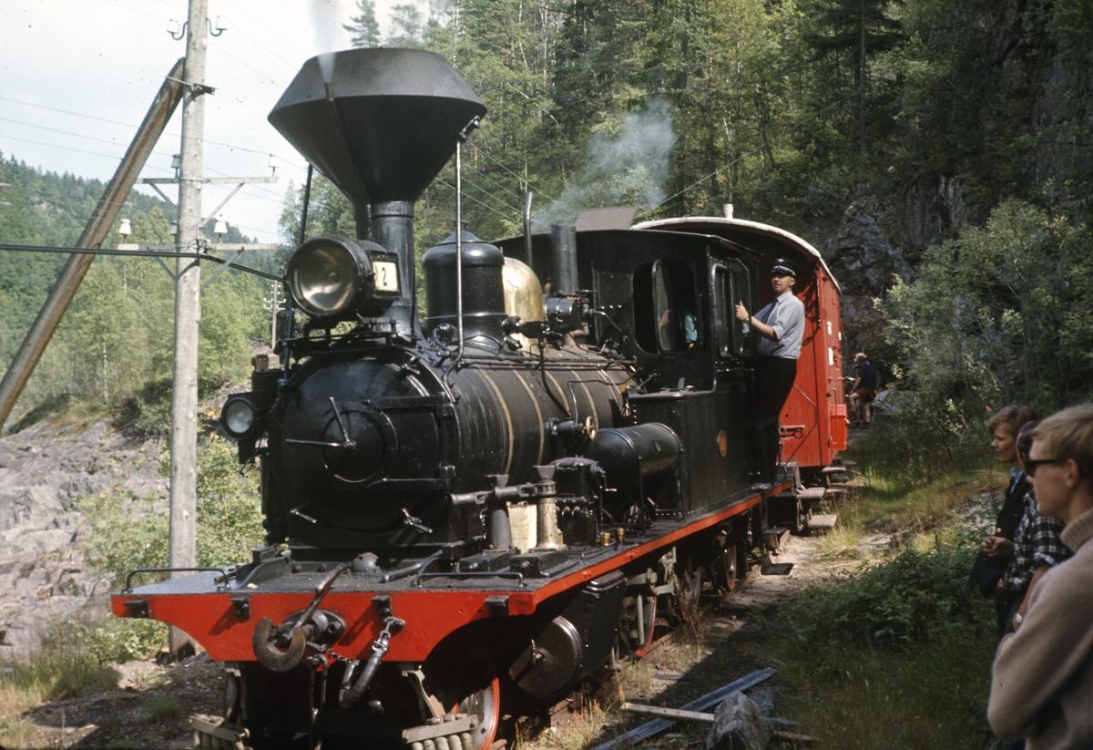 Setesdalsbanens tog ved Vrængen
