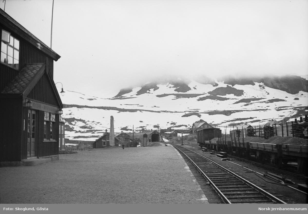Finse stasjon med godstog