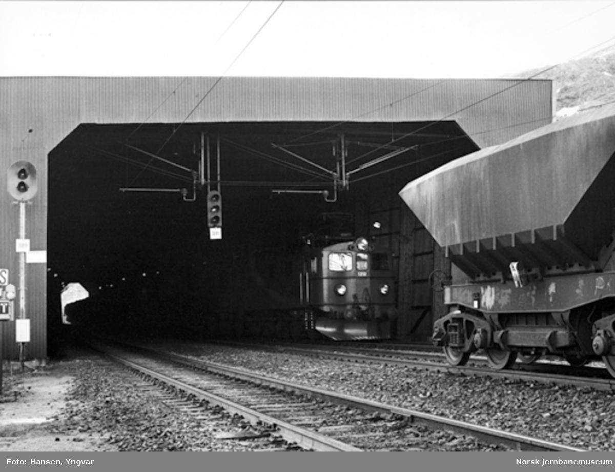 Bjørnfjell stasjon 18. juni 1980, om morgenen : kl. 08.50: malmtog 7314 ankommer