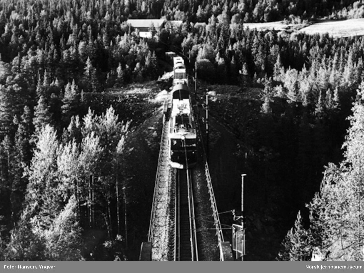 Godstog 5710 på Orkla bru