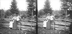 Gamle Digerud, Frogn, Akershus, 1899, ved sommerfjøset. Kare