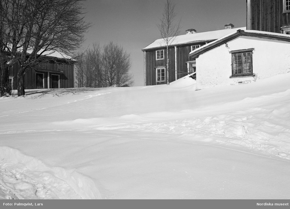 Jämtland. Offerdals sn. Grötom by. Nils Olssons gård. Från vänster bodlänga, mangårdsbyggnad, källare, kammarsbyggnad.