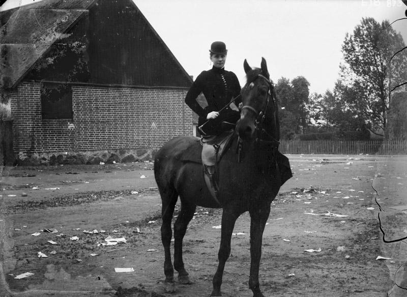 Kvinna knullar häst