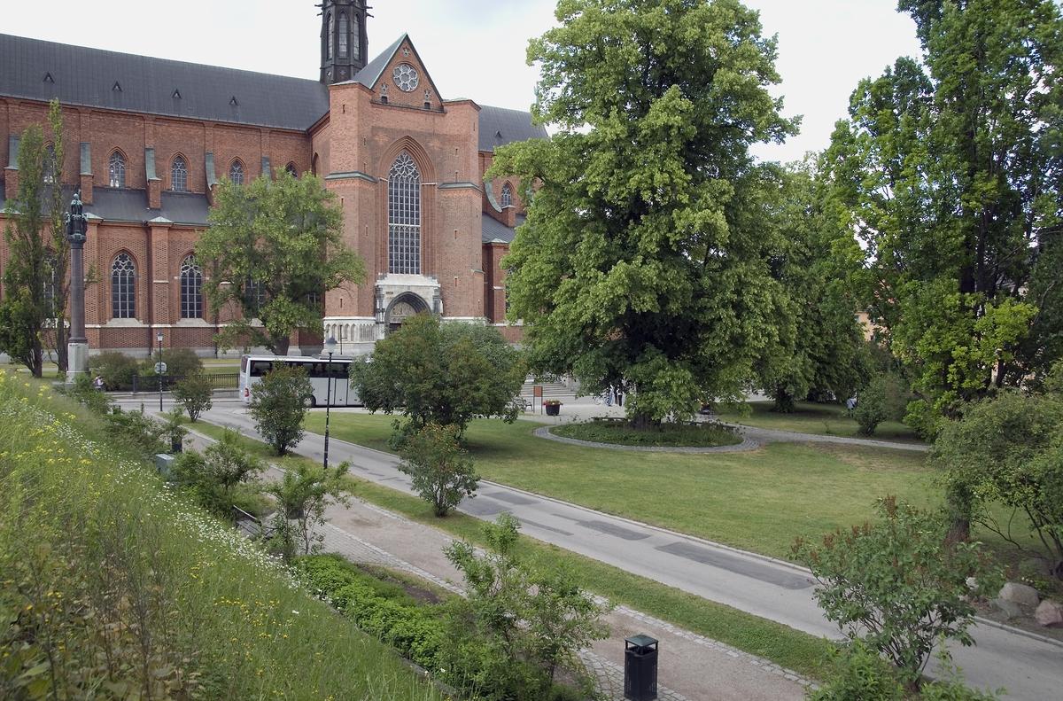 Riddartorget påminner, trots sitt namn, mest om – och uppfattas också i allmänhet som – en park snarare än ett torg, på grund av all grönska, Uppsala 2008