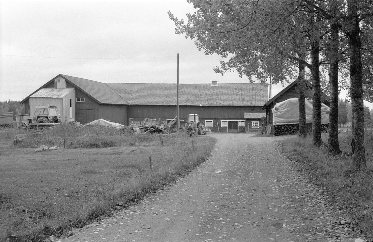 Ladugård och lada, Räbbo, Bälinge socken, Uppland 1983