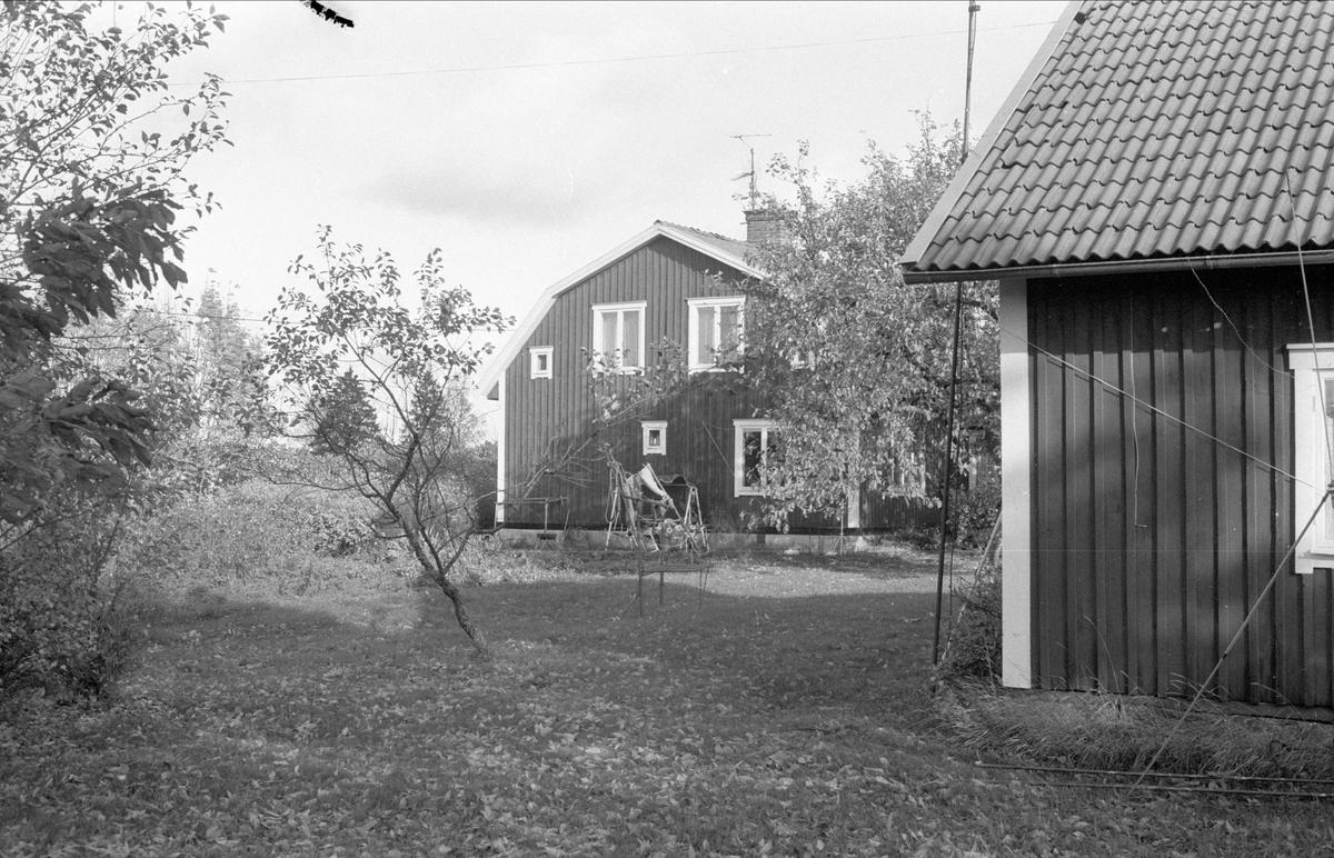 Bostadshus, Torvsätra 1:1, Bälinge socken, Uppland 1983