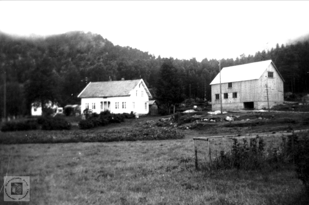 """""""Midtgarden"""", Stedjan i Bjelland."""