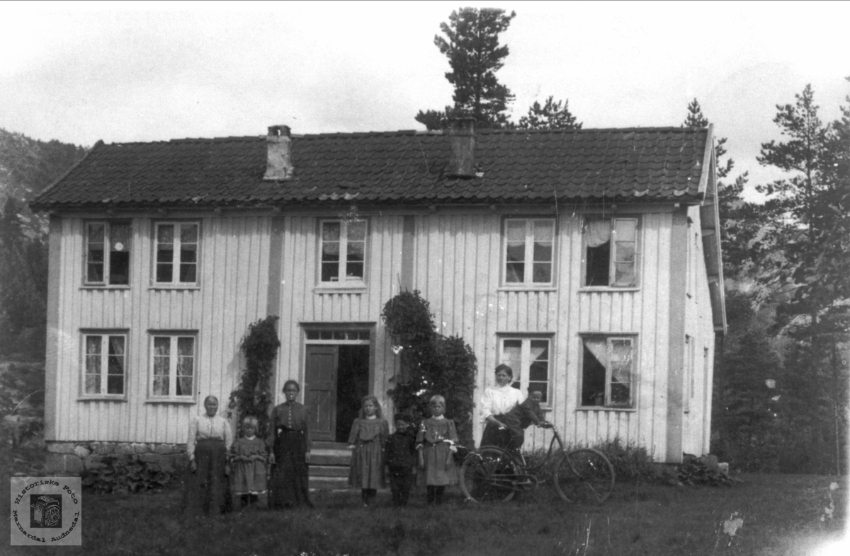 """Bitemoen"" på Trygland, Bjelland"