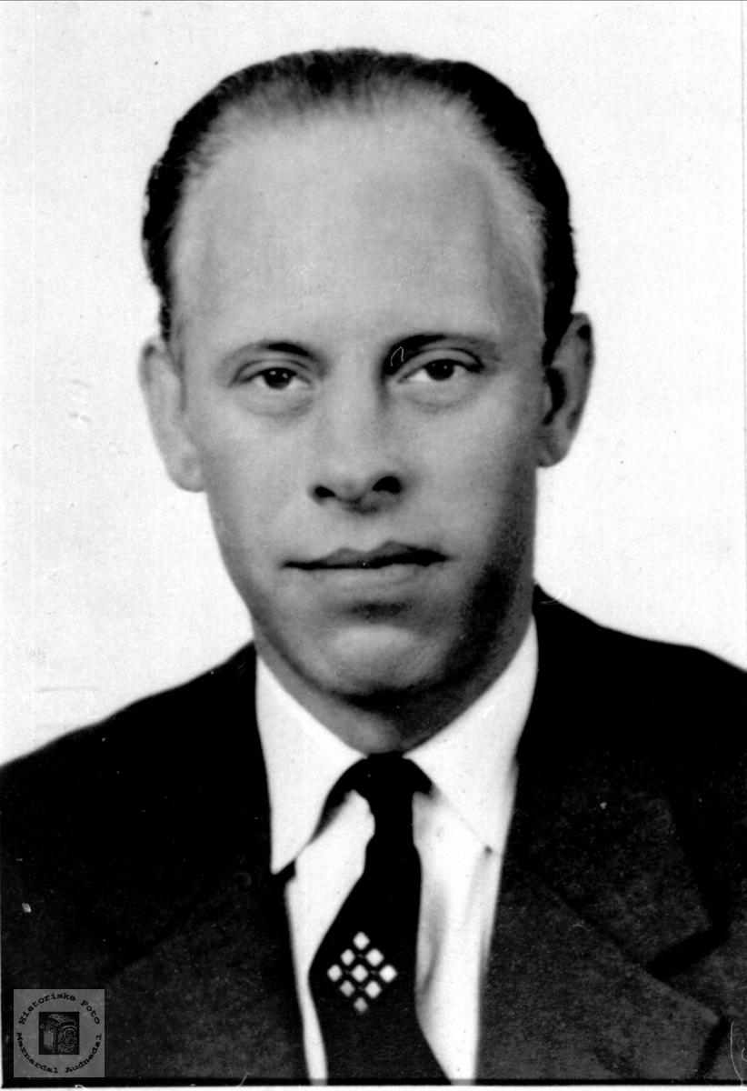 Portrett av Sverre Bue, Øyslebø.