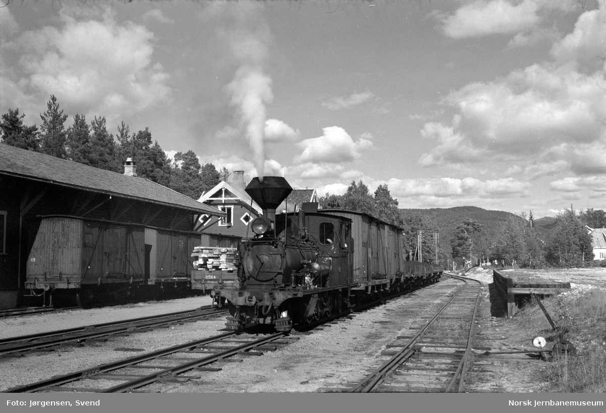Damplokomotiv nr. 2 med godstog 5661 skifter på Evje stasjon