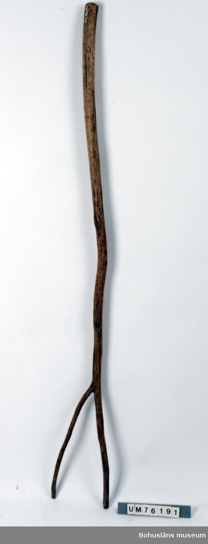Naturvuxen klyka med ett långt och rakt skaft gjort i samma trästycke. Torrsprickor.  Litt: Bringéus, Nils-Arvid, Arbete och redskap, Stockholm 1983, s. 92.  Ur punktnummerkatalogen 1958-1976: G. Hedlund Hötjuga 144 cm l.