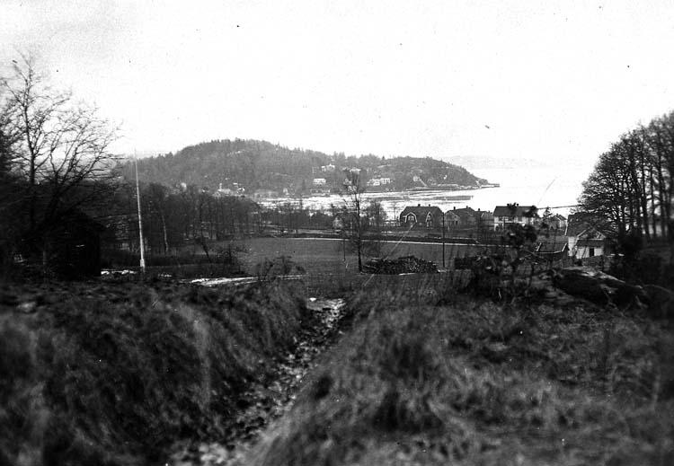 Vårbild från Ljungskile