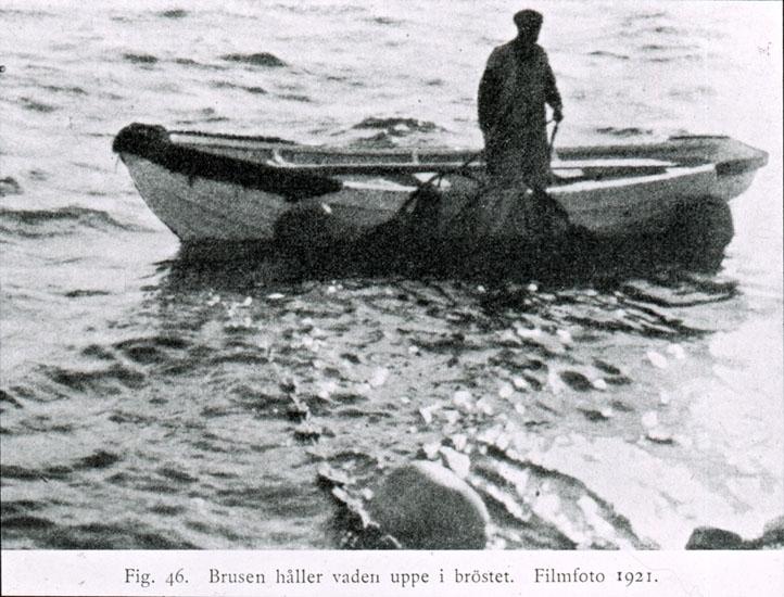 """Text på skioptikonplåten: """"Fig. 46. Brusen håller vaden uppe i bröstet. Filmfoto 1921."""""""