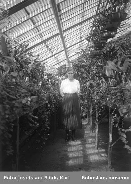 Kvinna i växthusinteriör, Trädgårdsföreningen i Göteborg