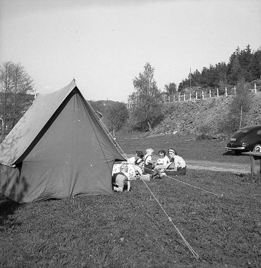 """Enligt fotografens notering: """"Badbilder Skeppsviken Maj 1951""""."""