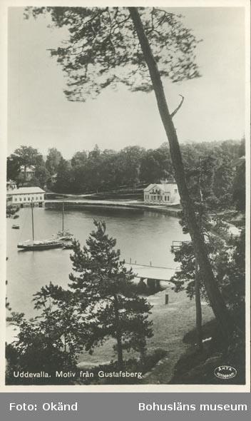 """Tryckt text på vykortets framsida: """"Uddevalla. Motiv från Gustafsberg."""" ::"""