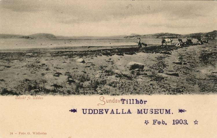 """Tryckt text på vykortets framsida: """"Utsikt fr. Udden Sundsvik."""""""