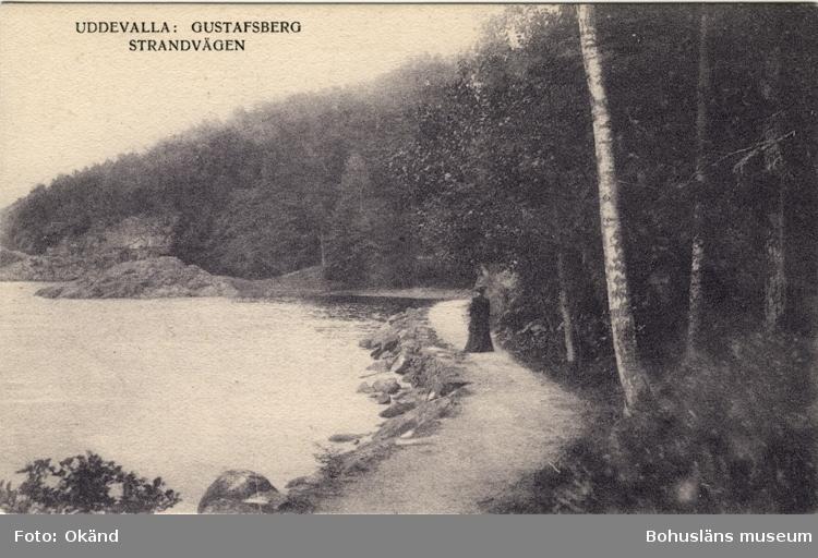 """Tryckt text på vykortets framsida: """"Uddevalla: Gustafsberg Strandvägen."""""""