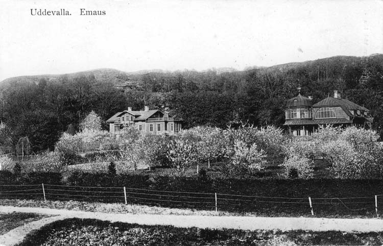 """Handskriven text på vykortets baksida: """"Uddevalla Emaus.""""  ::"""