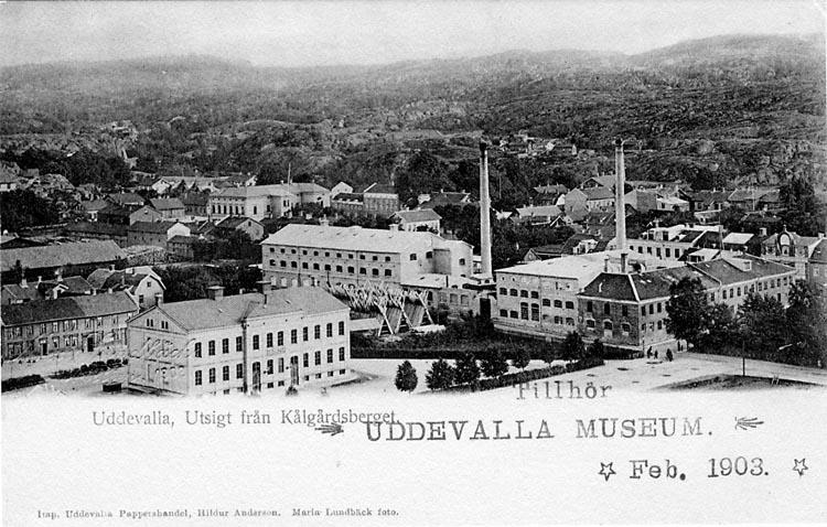 """Tryckt text på vykortets framsida: """"Uddevalla, Utsigt från Kålgårdsberget."""""""
