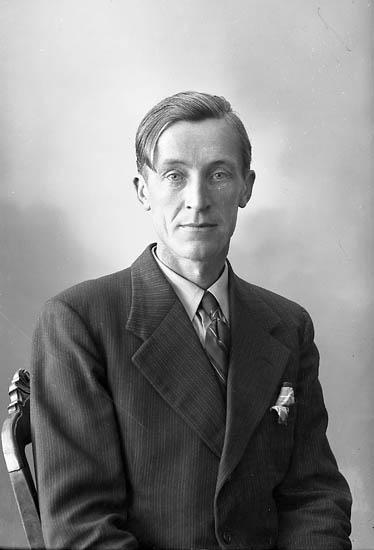 "Enligt fotografens journal nr 7 1944-1950: ""Hermansson, Herr Harry Arendal, Här""."