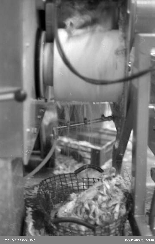 """Enligt fotografens noteringar: """"Dessa kort visar trumman där skinn och ben separeras, för att sedan falla ner i järnkorgar, en på var sida. Korgen töms med jämna mellanrum.""""  Fototid: 1995 den 16, 24 november och 11 december."""