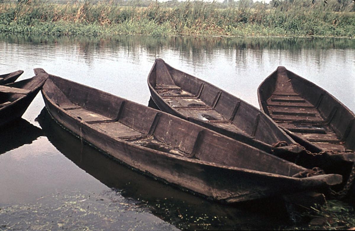 """""""Fotat Fr.o.m 1966-09-11 T.o.m 1966-09-17. Bottenplankbåt från Spree vid Havel""""."""