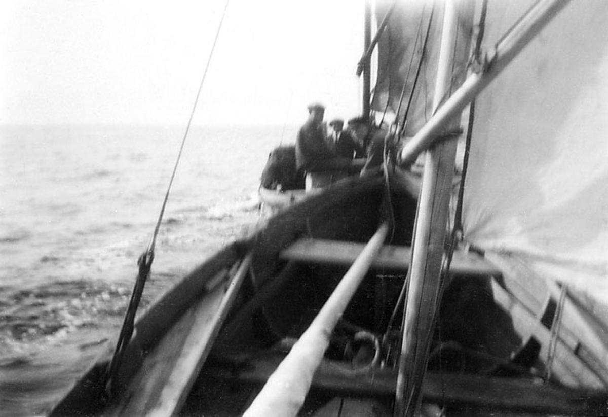 Skrivet på baksidan: Tagit i Öresund den 18-9-29.