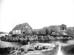 Trankokeriet på Kålhuvudet, Tjörn 1897