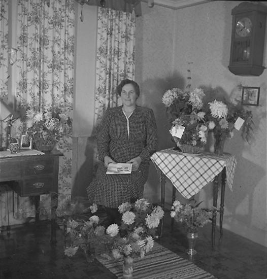 """Text till bilden: """"Fru Karlsson, Kronbergsgatan 22. 50 år 1945.10.09""""."""