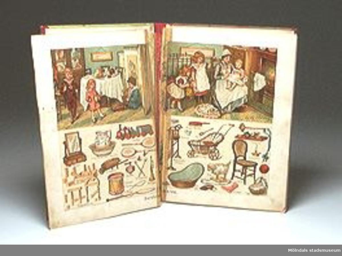 """Bilderboken heter """"Världen i bilder"""".Tidigare sakord: bilderbok (""""världen i bilder"""")."""