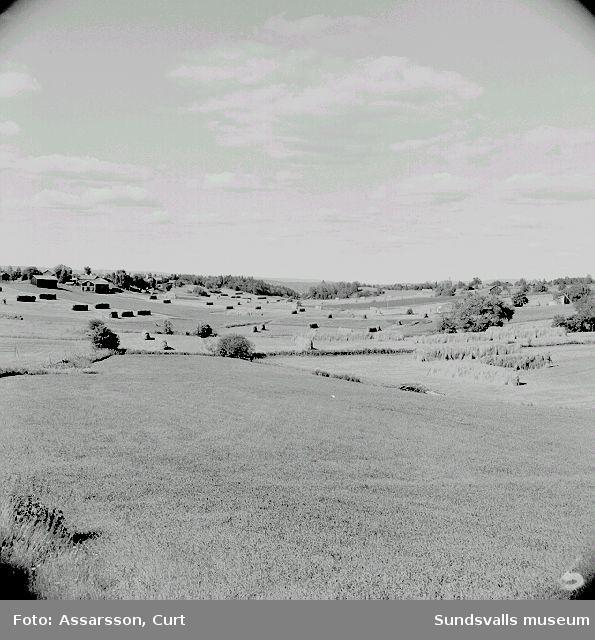 Jordbruksbygd vid Båräng.