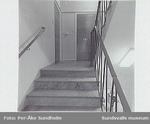 SuM-foto013469