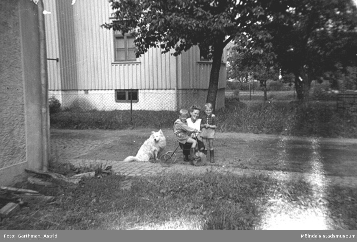 Hunden Moberg 1, Leif Garthman sittandes på en trehjuling, mamma Astrid Garthman samt ett okänt barn står på gräsmattan utanför huset vid Barnhemsgatan 21, 1940-tal.