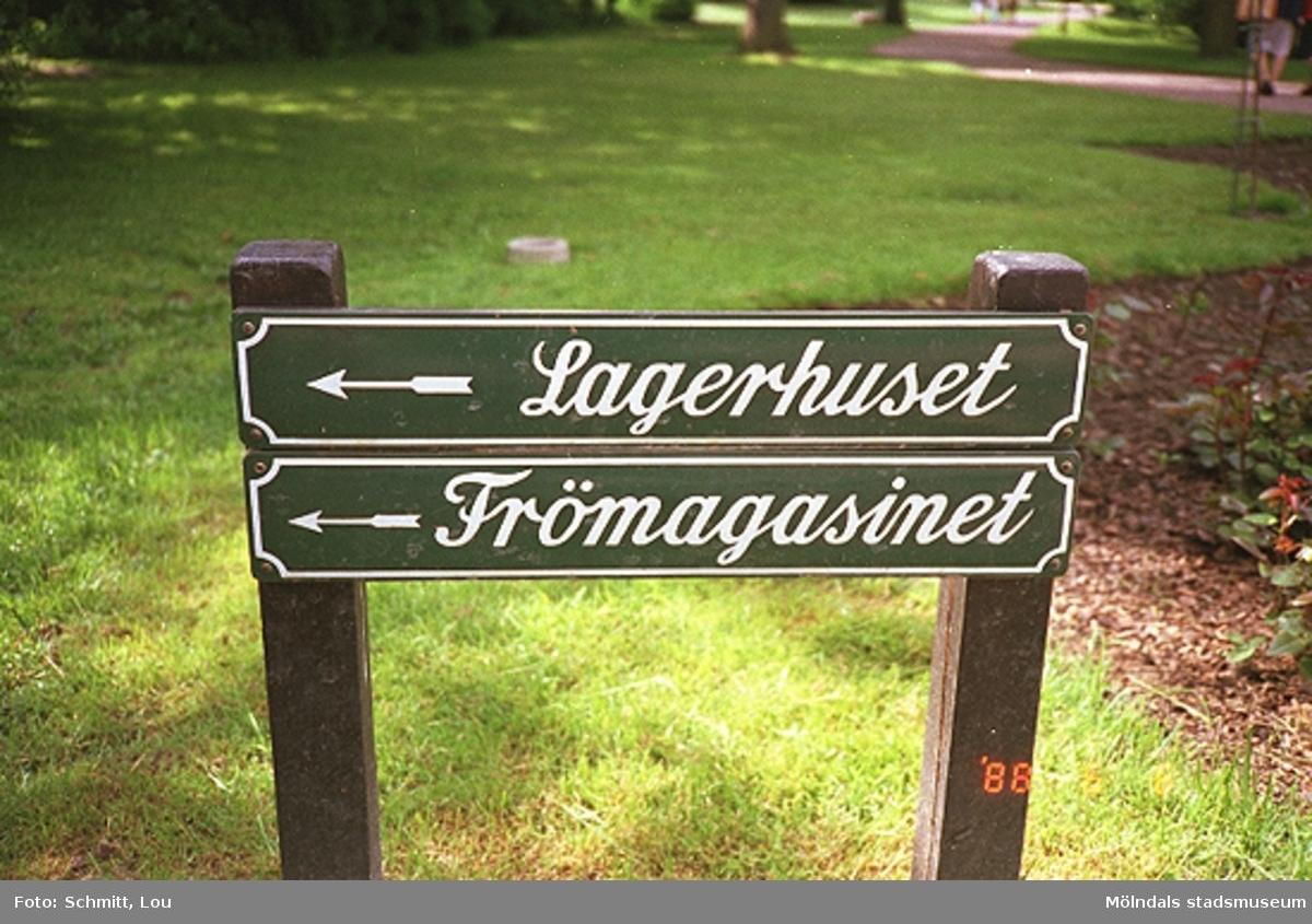 """Man ser två skyltar med var sin högerpil och texterna """"Lagerhuset"""" och """"Frömagasinet"""". Skyltarna är uppspikade på två bruna stolpar. I bakgrunden ser man gräsmattor inne på Trädgårdsföreningens område."""