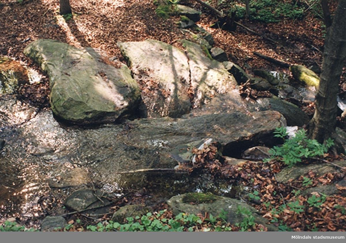 Utplacerade stenhällar längst bäcken i Lackarebäcksskogen.