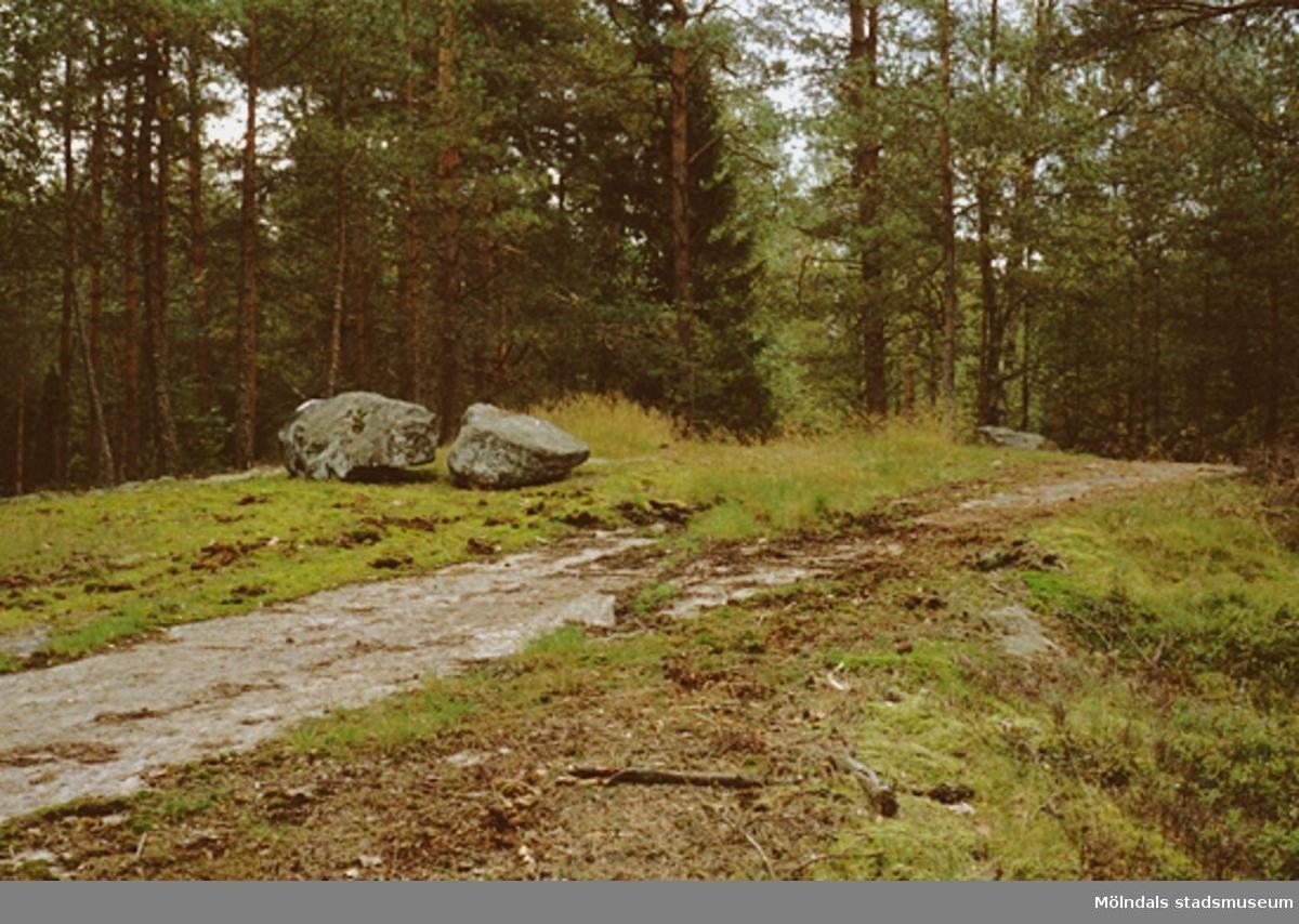 Sten på stig mot Djursjön, oktober 1993.