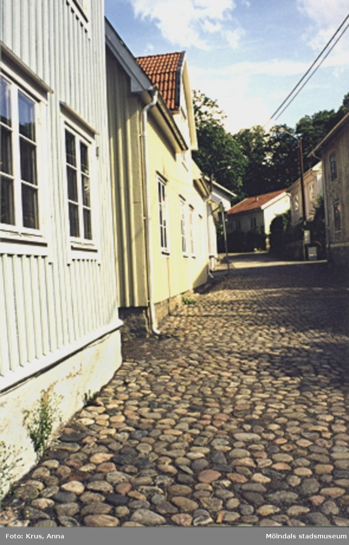 Royens gata i Kvarnbyn.