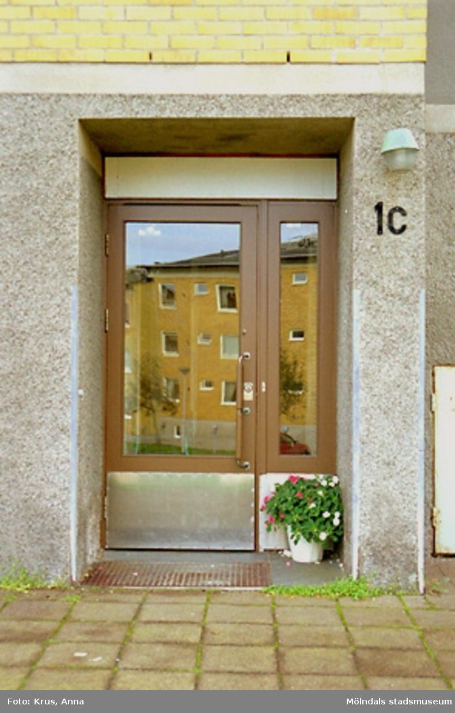 """Västra Enerbacken - """"Södra """" Lövgatan - entré.Entrédörren målad med brun färg 1998. Dörren var ursprungligen bara betsad."""