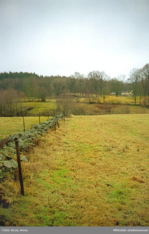 """Kulturlandskap - gärdesgård """"Stenbäck/Gårdalien""""."""