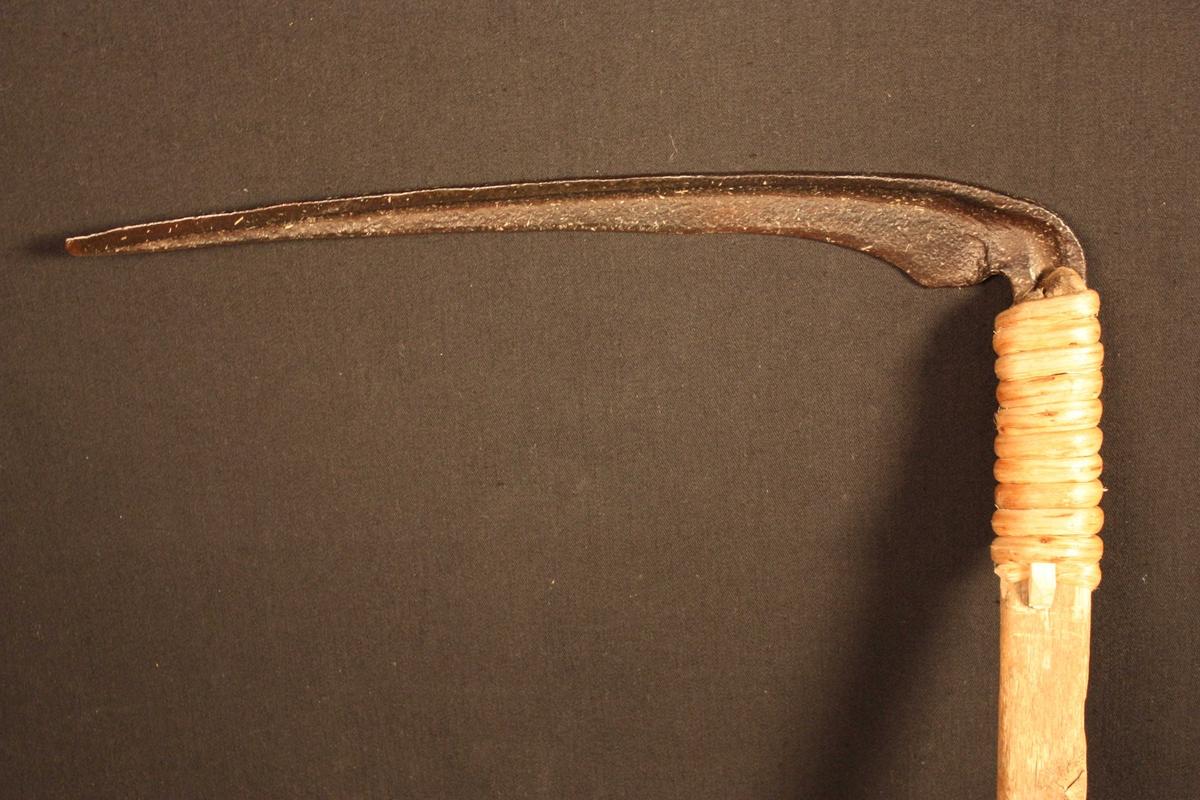 Stuttorv med naturvakse skaft med knekk. Ljåbladet er festa til skaftet med tæger; dette er gjort av Jon Barlund på Sunnfjord Museum fordi det opphavlege festet var øydelagt.
