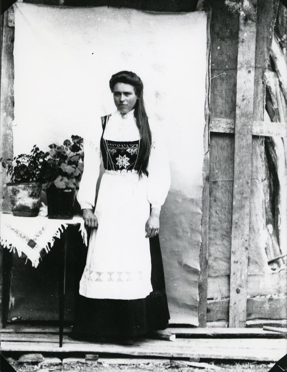 """Kvinne i bunad/""""nasjonaldrakt"""", ved bord med planter. Lerret på husvegg"""