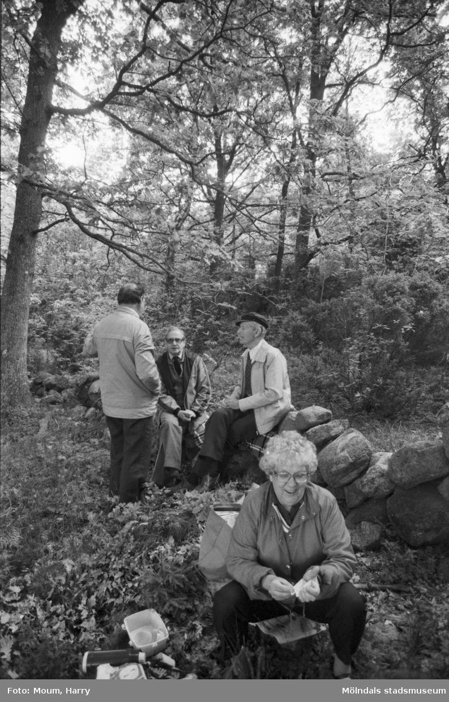 """Gökotta i Kållered, år 1984. Främst Eivor Bjerrhede. Bak fr. vä. Thure Bjerrhede, Pelle Bjärkå, Gustaf Carlsson, alla Kållered.  """"Visst är det vackert vid Långåker en gökottemorgon.""""  För mer information om bilden se under tilläggsinformation."""