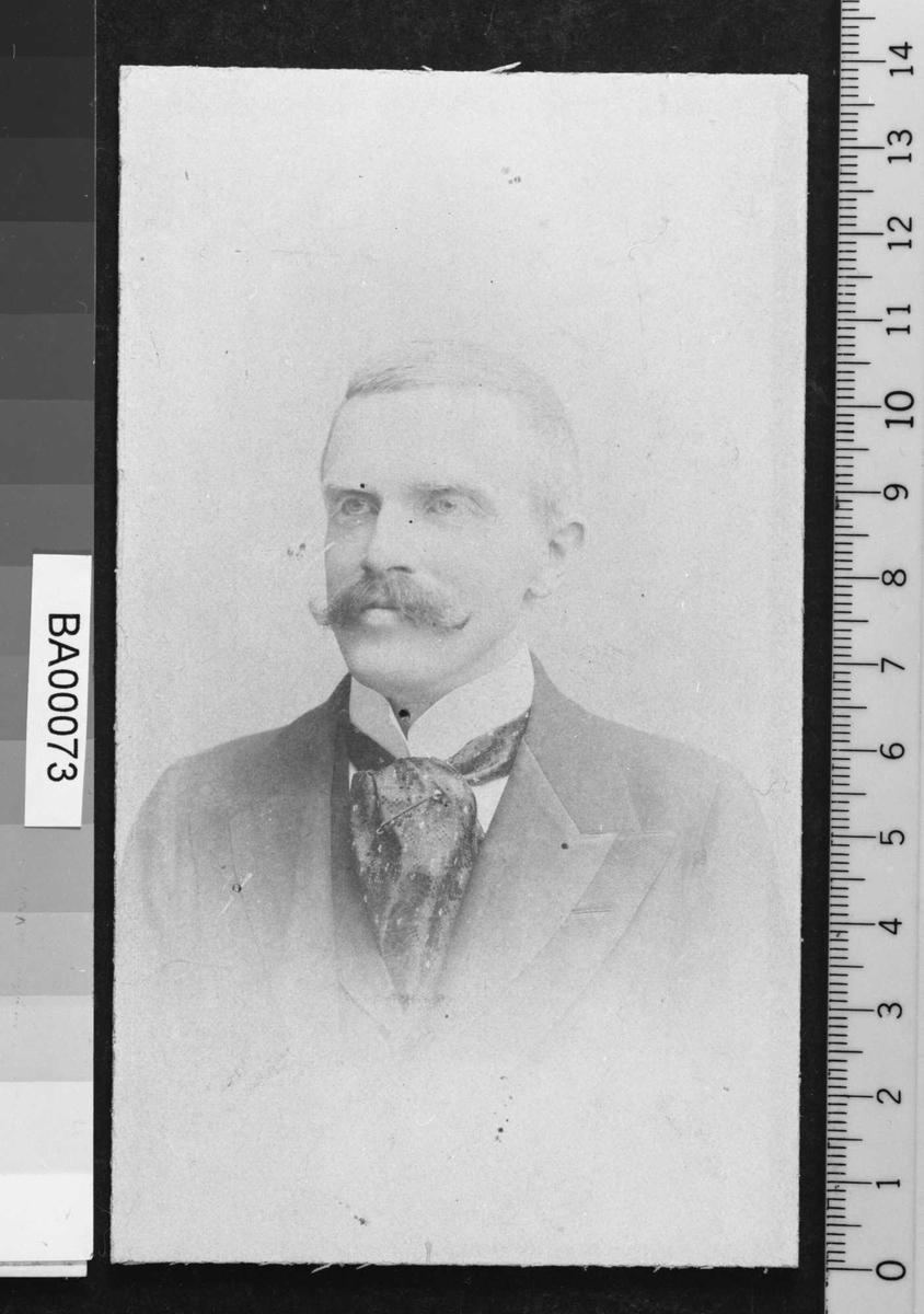 Einar Bjørnson, portrett